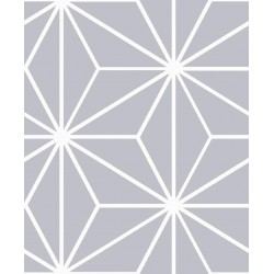 Coton asanoha