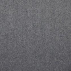 Polaire grise