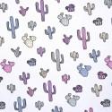 Magic jersey cactus