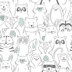Coton friends