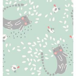 Coton cats