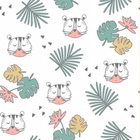 Coton tigers