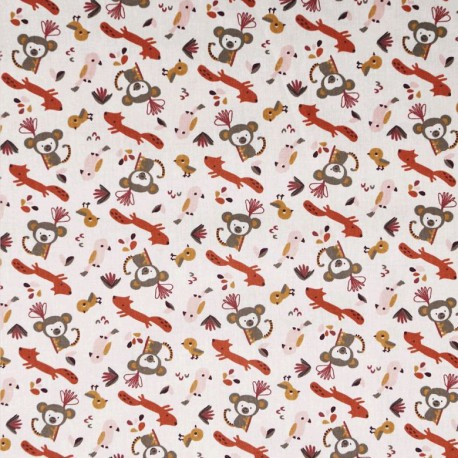 Coton monkeys-fox