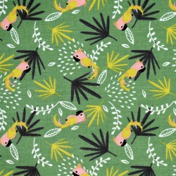 Coton parrots