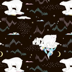 ECO-PUL - Arctic bears