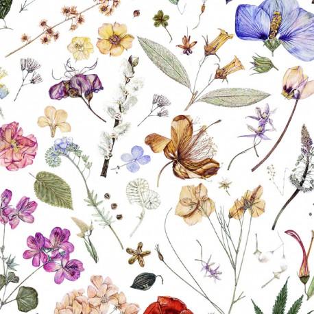 Liberty Floral Eve