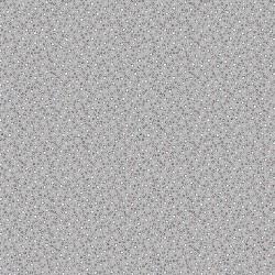 Coton étoiles grises
