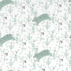 Rabbits cotton