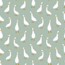 Jersey cute geese