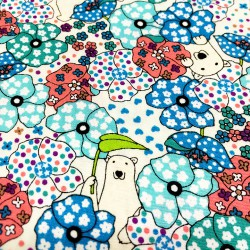 Cotton Kobayashi - Bears