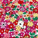 Cotton Kobayashi - Bears